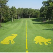 Northlands Blog- Slow Play